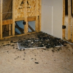 Raccoon feces piled up in a house under construction.